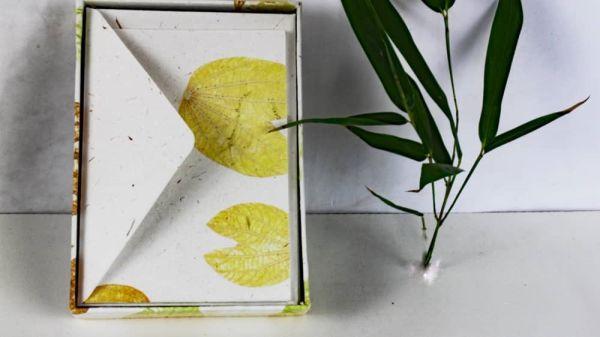 Elefantenpups-Papier, handgeschöpft, neutrale Schreibbox
