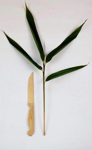 Bambus Obstmesser