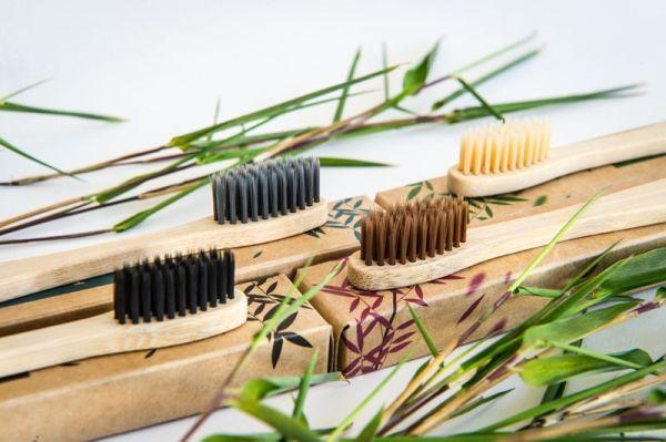Bambus Zahnbürsten mit Bambus Aktivkohleborsten