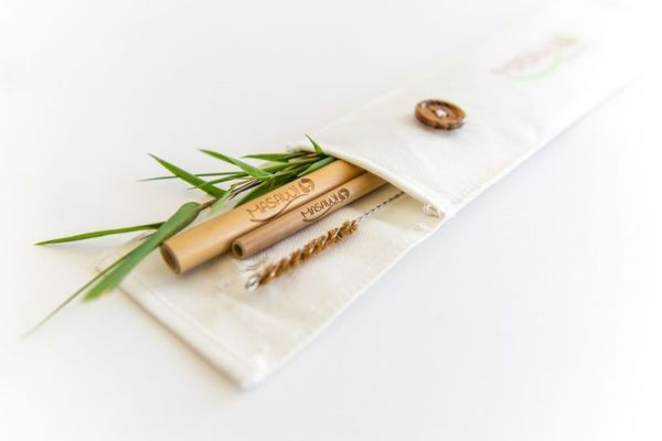Bambus-Strohhalm Travel Set