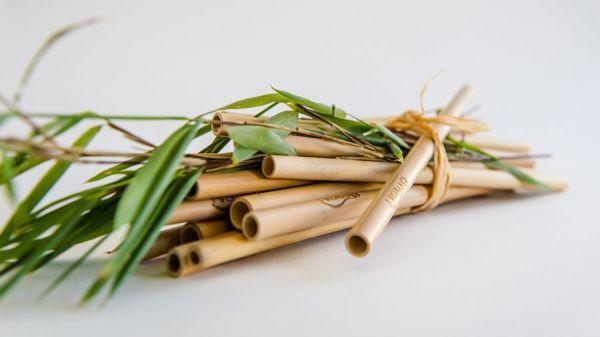 Strohhalme Bambus Cocktail